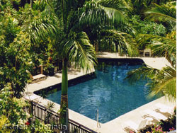 Vacation Rental Garden and Pool View - click for larger picture